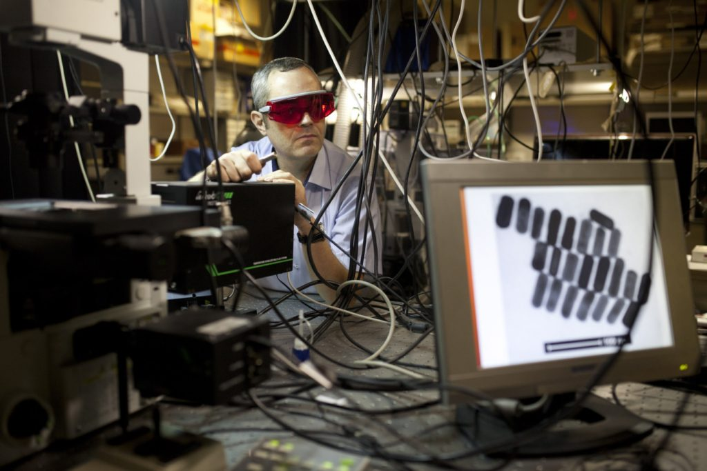 דרור פיקסלר מצולם ב מעבדה בבר אילן